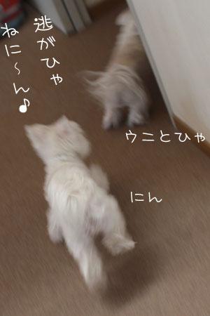 1_13_0015.jpg