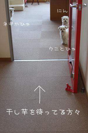1_14_1481.jpg