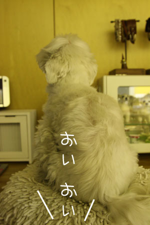 1_15_1509.jpg