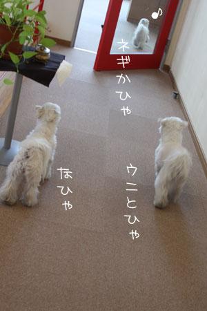 1_15_1561.jpg