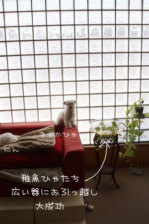 1_16_1634.jpg