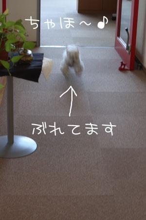 1_16_1664.jpg