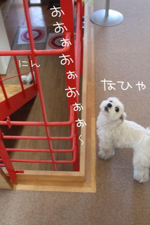 1_16_1697.jpg