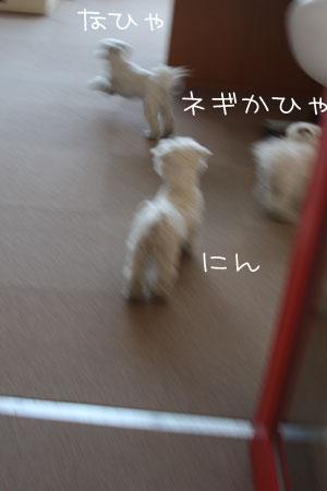 1_16_1722.jpg