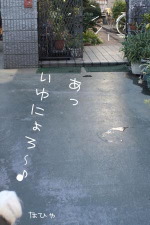 1_17_0301.jpg