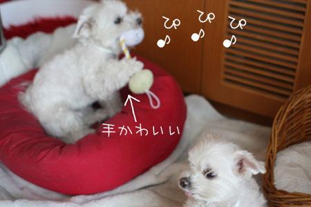 1_22_0772.jpg