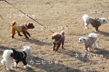 1_23_2688.jpg