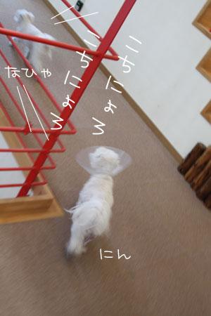 1_24_2822.jpg