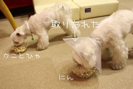 1_24_2931.jpg