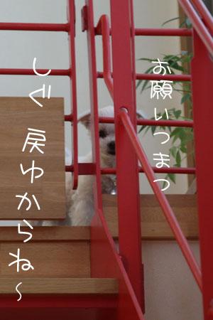 1_26_3112.jpg
