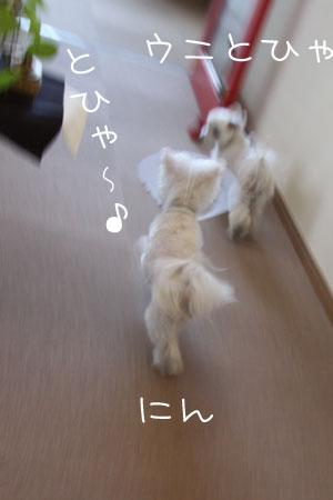 1_26_3137.jpg