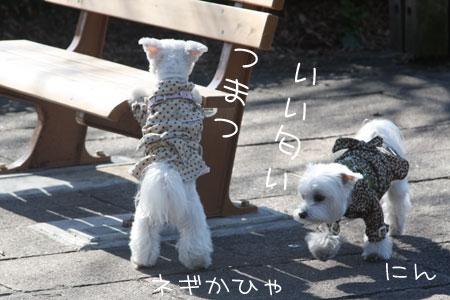 1_27_3244.jpg