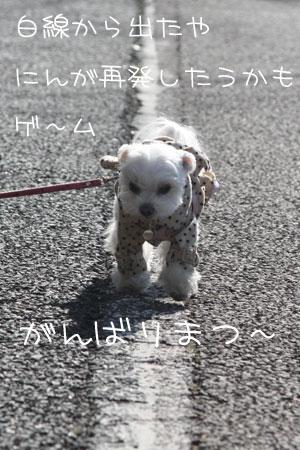1_27_3342.jpg