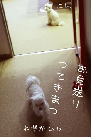 1_28_3354.jpg