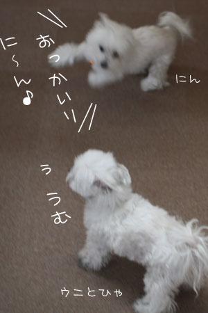 1_30_1310.jpg
