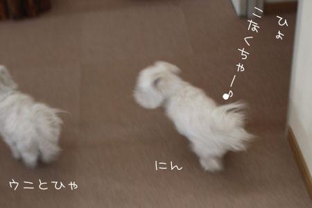 1_30_1320.jpg