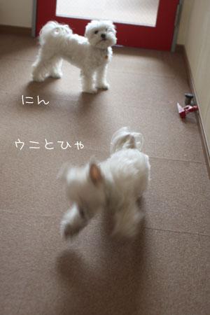 1_30_1329.jpg