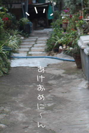 1_5_8327a.jpg