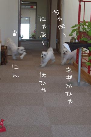 1_9_1056.jpg