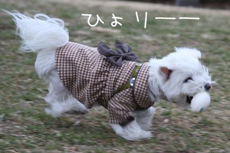 2_11_4966.jpg