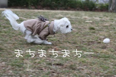 2_11_4972.jpg