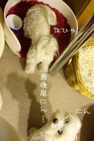 2_15_5310.jpg