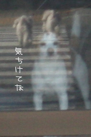 2_16_2081a.jpg