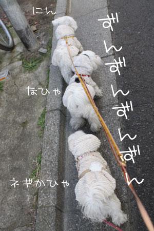 2_1_1418.jpg