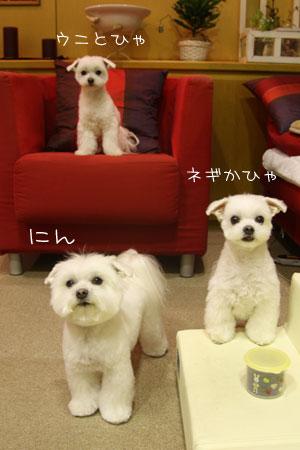 2_21_5979.jpg