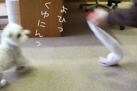 2_22_6032.jpg