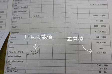 2_23_2450.jpg