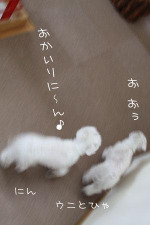 2_27_7701.jpg