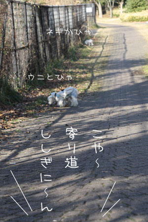 2_4_4220.jpg