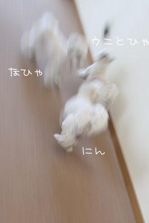 2_9_4749.jpg