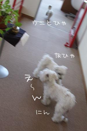 2_9_4752.jpg