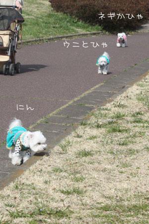 3_12_9878.jpg