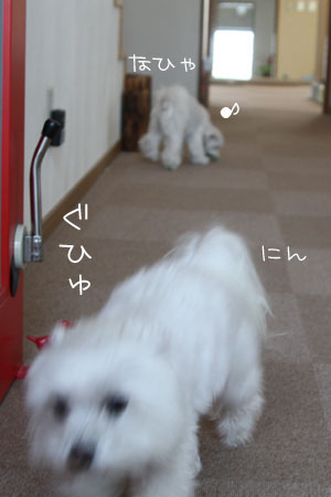 3_13_0057.jpg