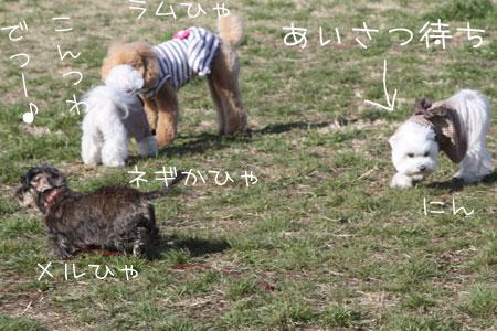 3_14_0267.jpg