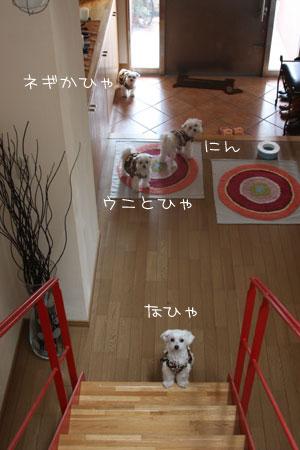 3_16_0517.jpg