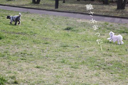 3_17_0626.jpg