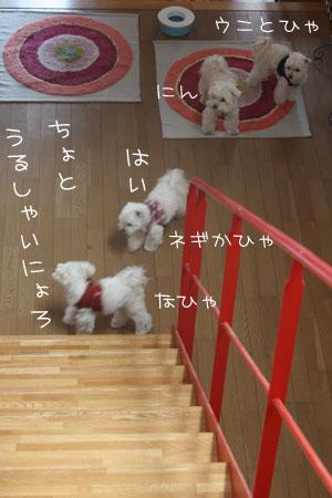 3_18_0852.jpg