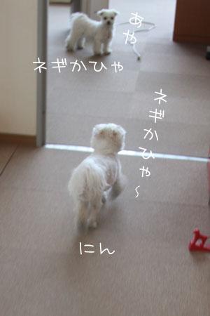 3_18_0889.jpg