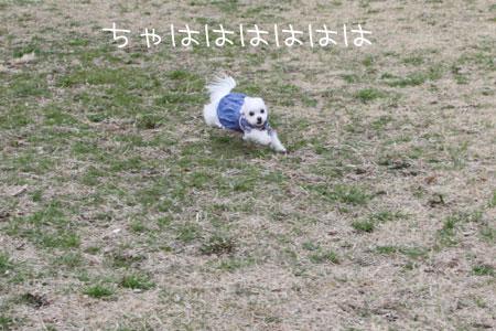 3_1_7902.jpg