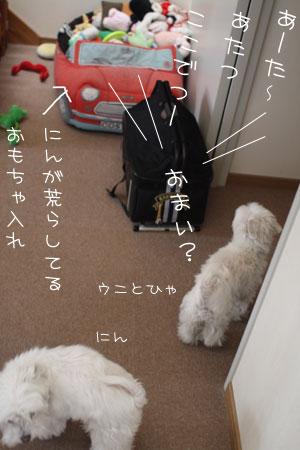 3_25_4000.jpg