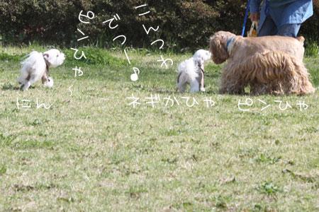 3_26_2503.jpg
