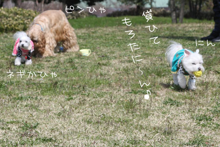 3_27_2610.jpg