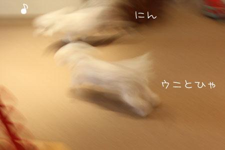 3_29_2916.jpg