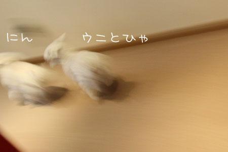 3_29_2918.jpg