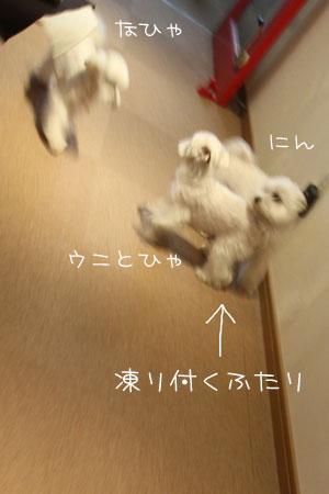 3_29_2920.jpg