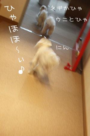 3_29_2927.jpg